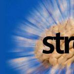 Stres sodobnega časa